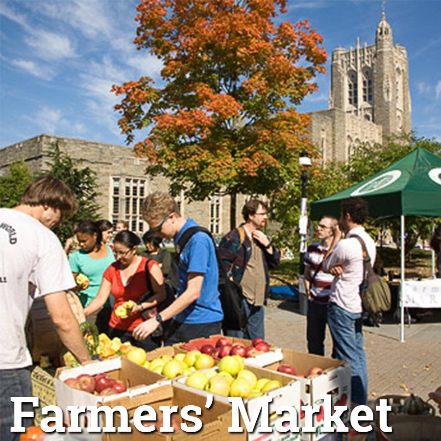 Farmers market at Princeton University on Wednesday afternoons